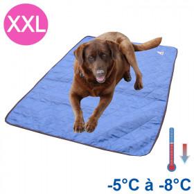 Tapis rafraîchissant chien XXL bleu