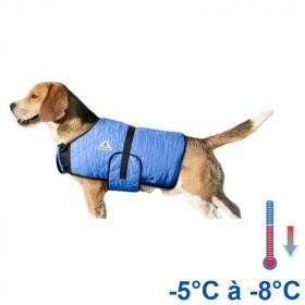 Manteau rafraîchissant chien bleu