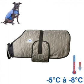 Manteau rafraîchissant pour chien HyperKewl Argenté