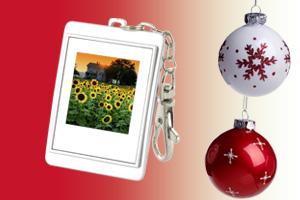 Le cadre photo numérique : l'idée cadeau simple et sûre !