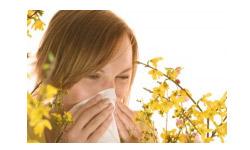Spécial allergies : les purificateurs d'air REVITALISOR et humidificateurs pour lutter contre les allergies respiratoires, pollens, rhumes des foins, asthmes…