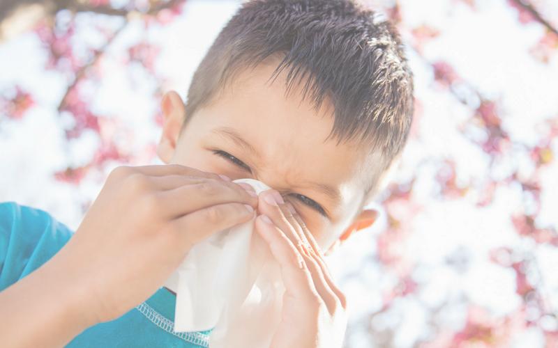 Allergie respiratoire : quelques conseils pour éviter les réactions et les gènes respiratoires