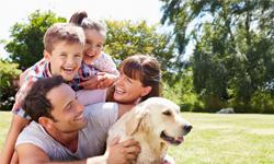 Découvrez notre gamme de produits rafraîchissants pour toute la famille…même le chien !