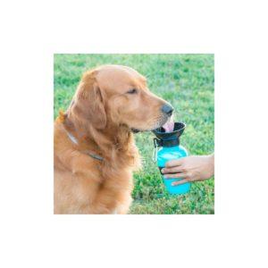 Bouteille d'eau pour chien