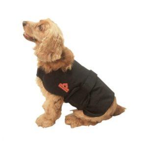 Manteau chauffant pour chien